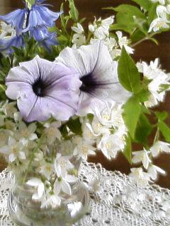 庭の花を活けて